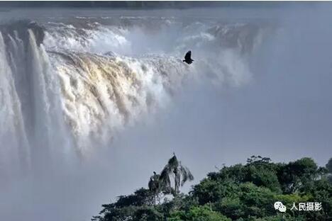 盘旋在伊瓜苏瀑布之鹰