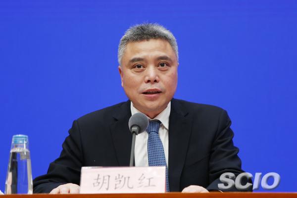 国新办新闻局局长、新闻发言人胡凯红
