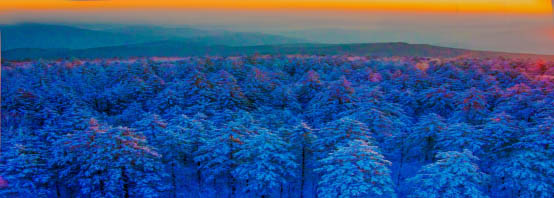 大箐山雪淞奇观的审美感觉