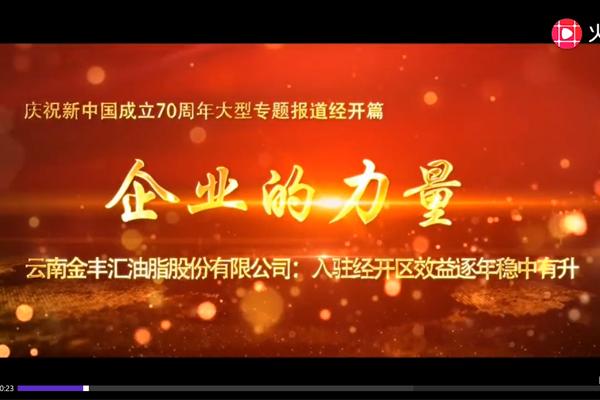 庆祝新中国成立70周年大型专题报道——企业的力量